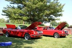 Ford Mustangs at the Howard Steamboat Museum Car Show